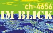ch-4656 im Blick