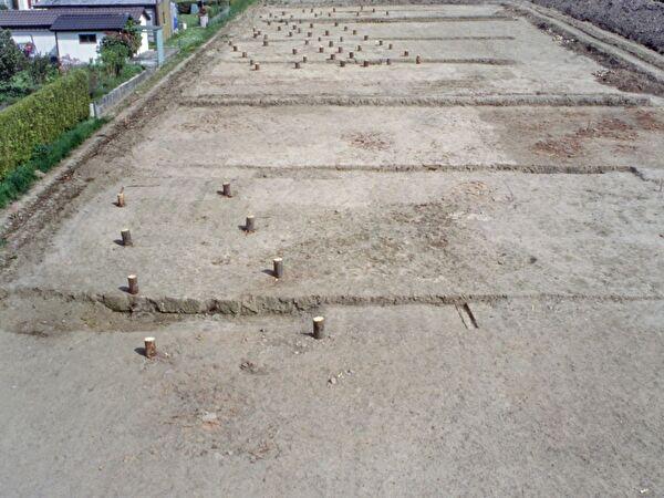 Die Grabungsfläche nach dem ersten Abtrag