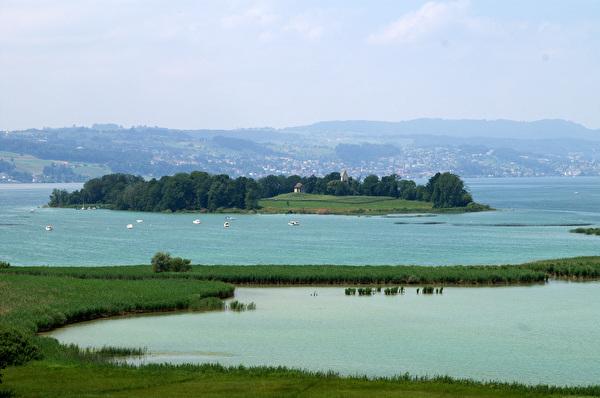 See, Schilf, Naturschutzgebiet