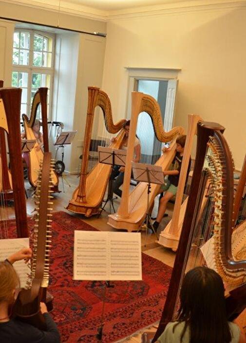 Gesucht: Harfe / Leitung Steicher-Ensemble
