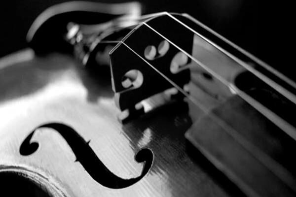 Geige schwarz weiss