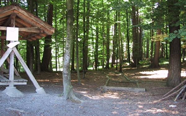 Finnenbahn im Wald