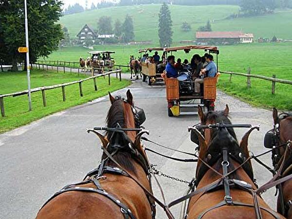 Ausflug Grosser Gemeinderat