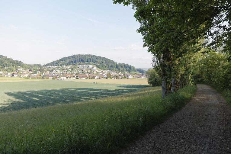 Blick auf Schafisheim aus Südosten