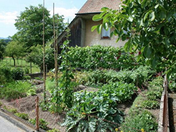 Bauernhausgarten