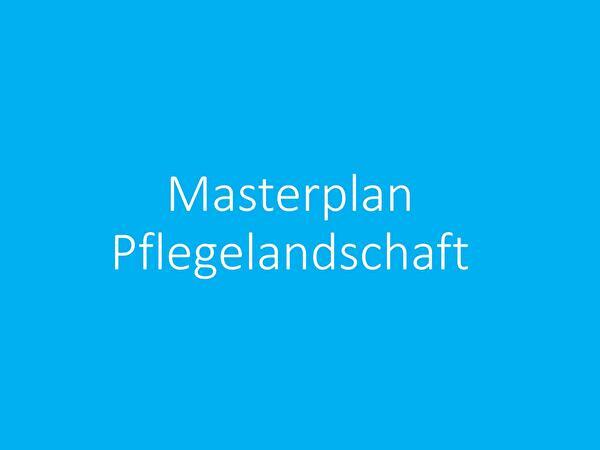 Masterplan Pflegelandschaft