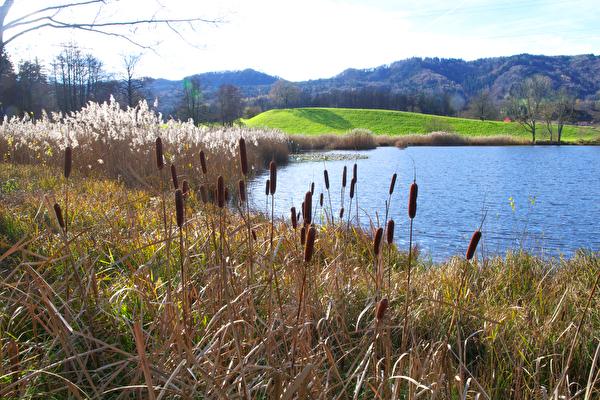 Gattikerweiher mit Naturschutzgebiet