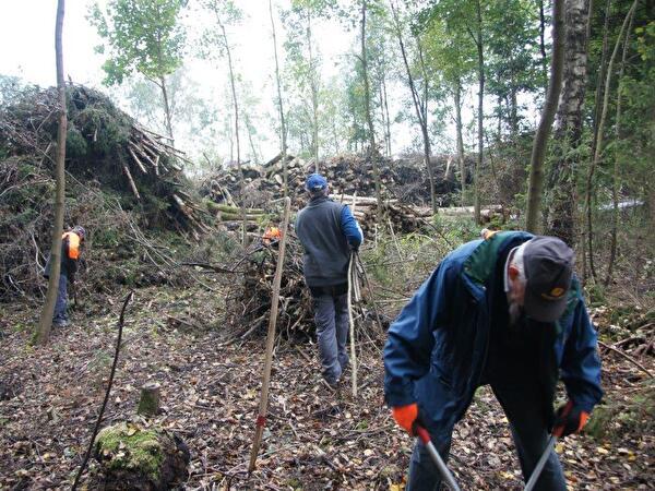 Helfer der Gruppe 60+ am Bäume rhoden