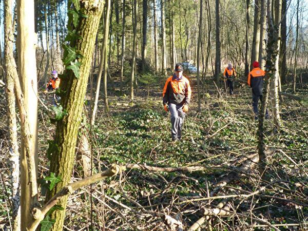 Gruppe Natur 60+ beim Holz schneiden im Fahrmaadhof