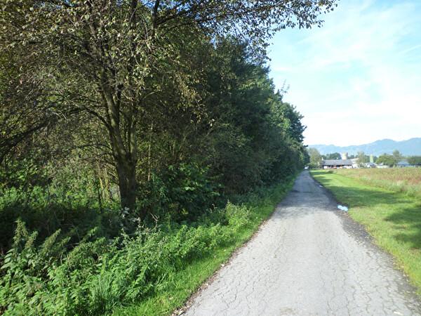 Rietstrasse Richtung Bauernhof Kuster