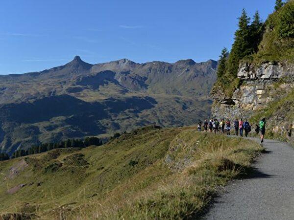 Umwelteinsatz Alp Prod