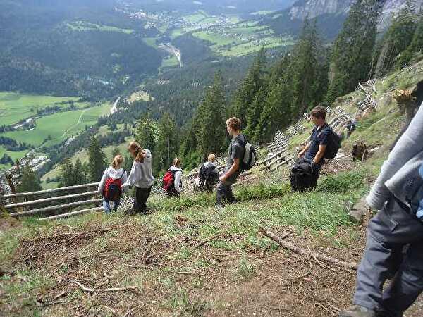 Projekt  Bergwald der 3. Oberstufe