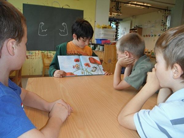 Ein Junge liest ein Bilderbuch vor.