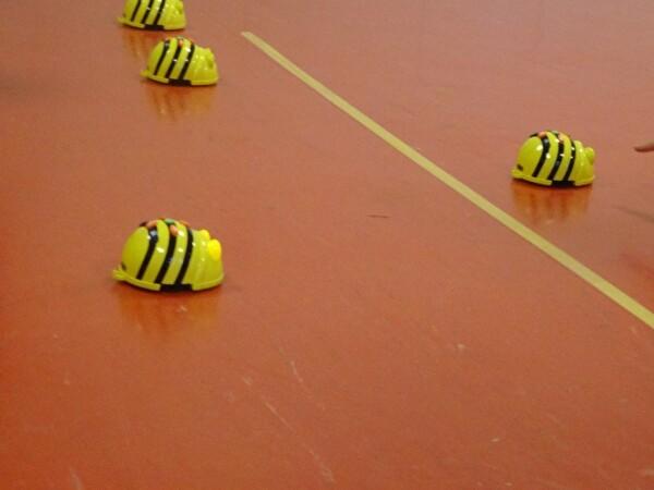Bee Bot Rennen