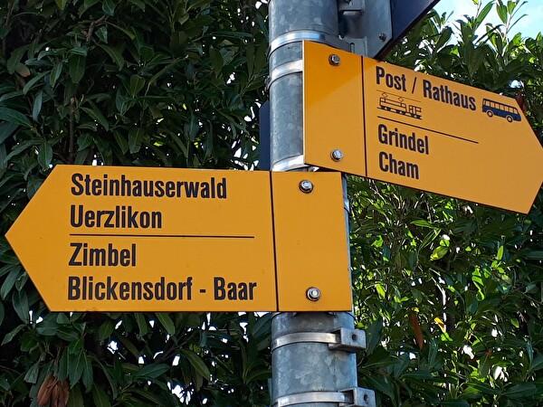 Steinhauserwald