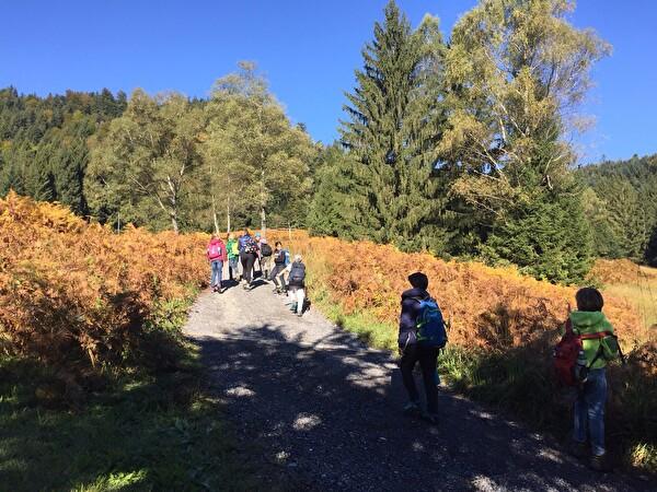 Herbstwanderung Letzi