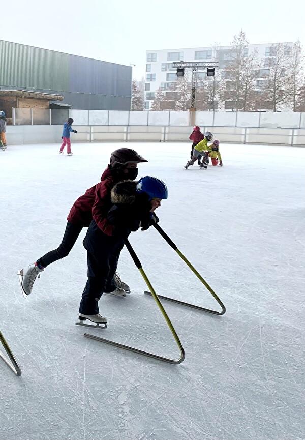 Sus mit Schlittschuhen auf dem Eis