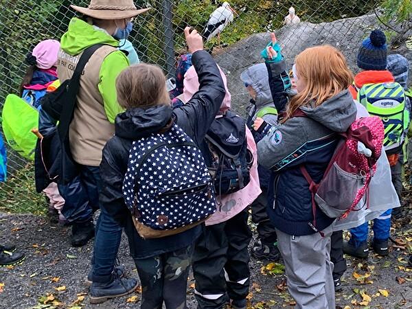 Oberwil: Unterstufe Tiere im Winter