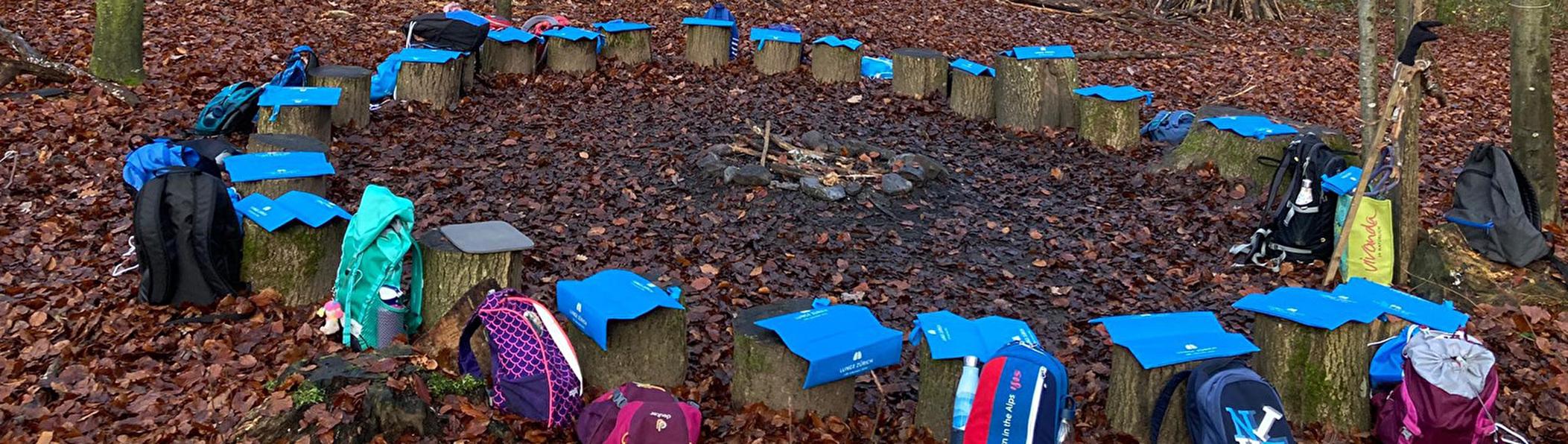Schule im Wald mit Holzträmmel