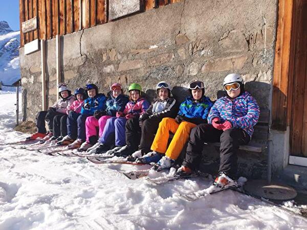 Skilager Elm