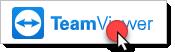 Support via Teamviewer
