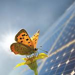Kraftwerk Wädenswil für mehr Solarstrom