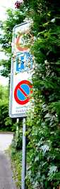 Signal durch Gebüsch verdeckt
