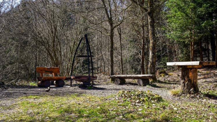 Grillstelle im Rantelwald