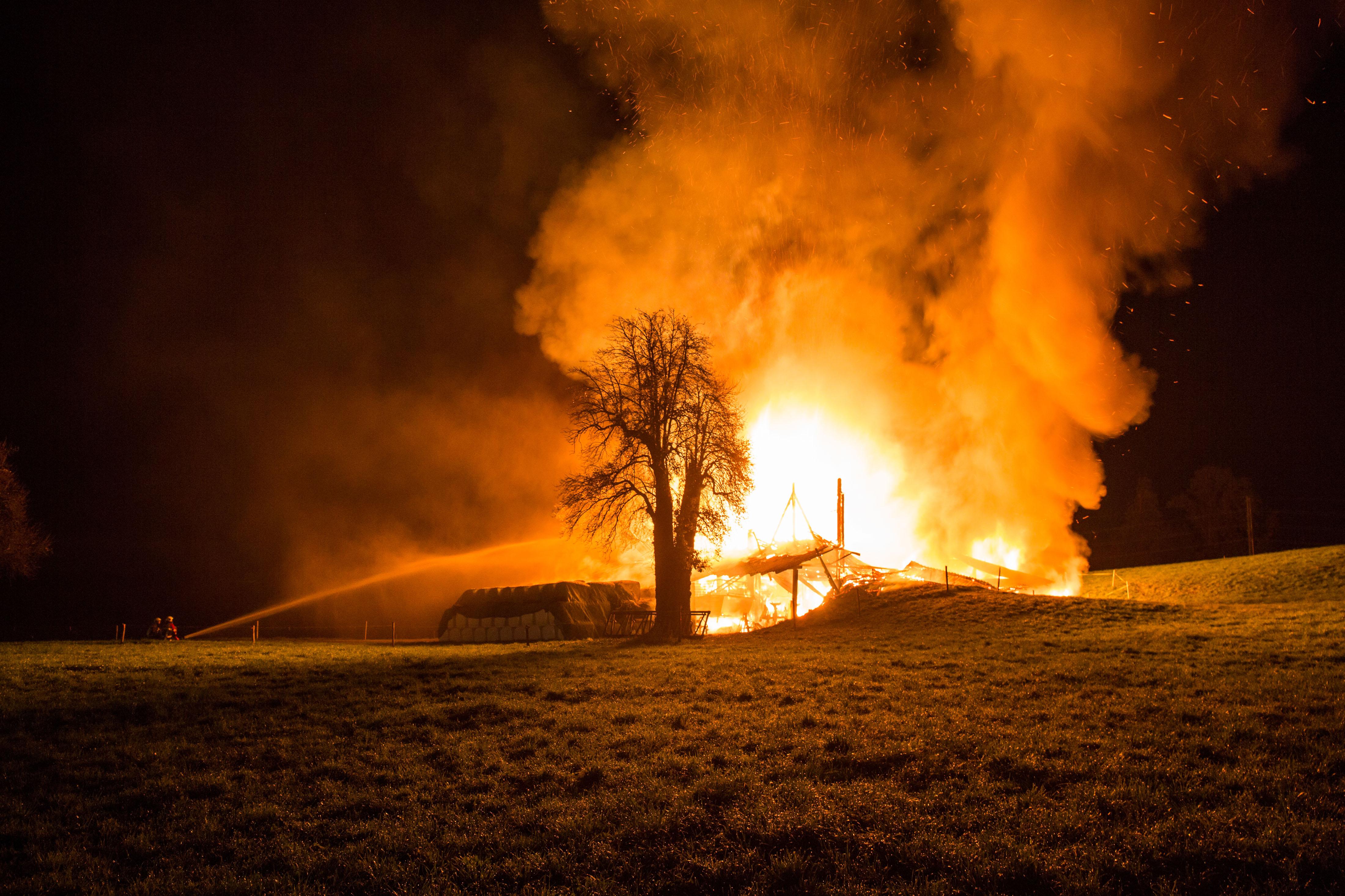 2017 Brand Nähe Bibersee
